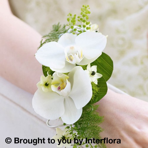 White Orchid and Fern Wrist Corsage product image