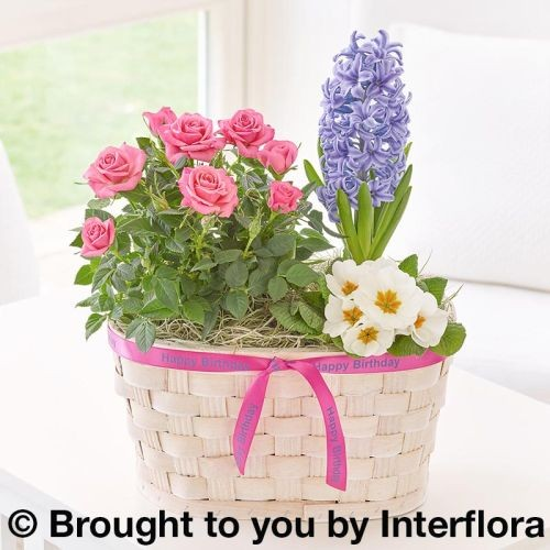 Happy Birthday Blossoming Pastels Basket product image