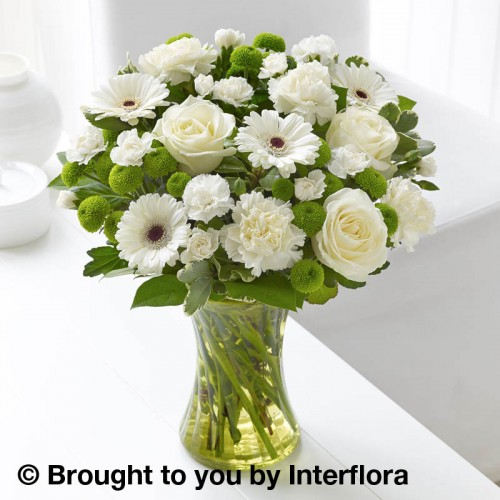 White Sympathy Vase Plus product image
